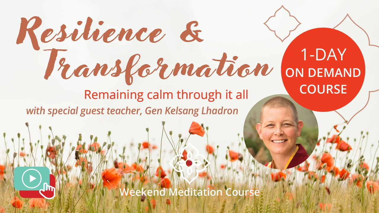Resilience and Transformation On Demand Meditation Course