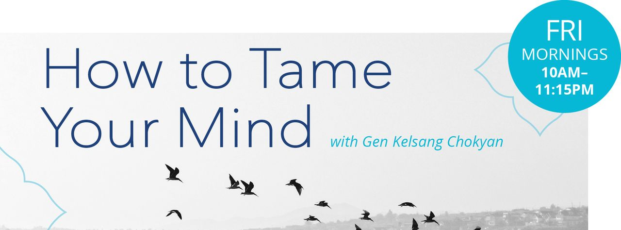 How to Tame Your Mind